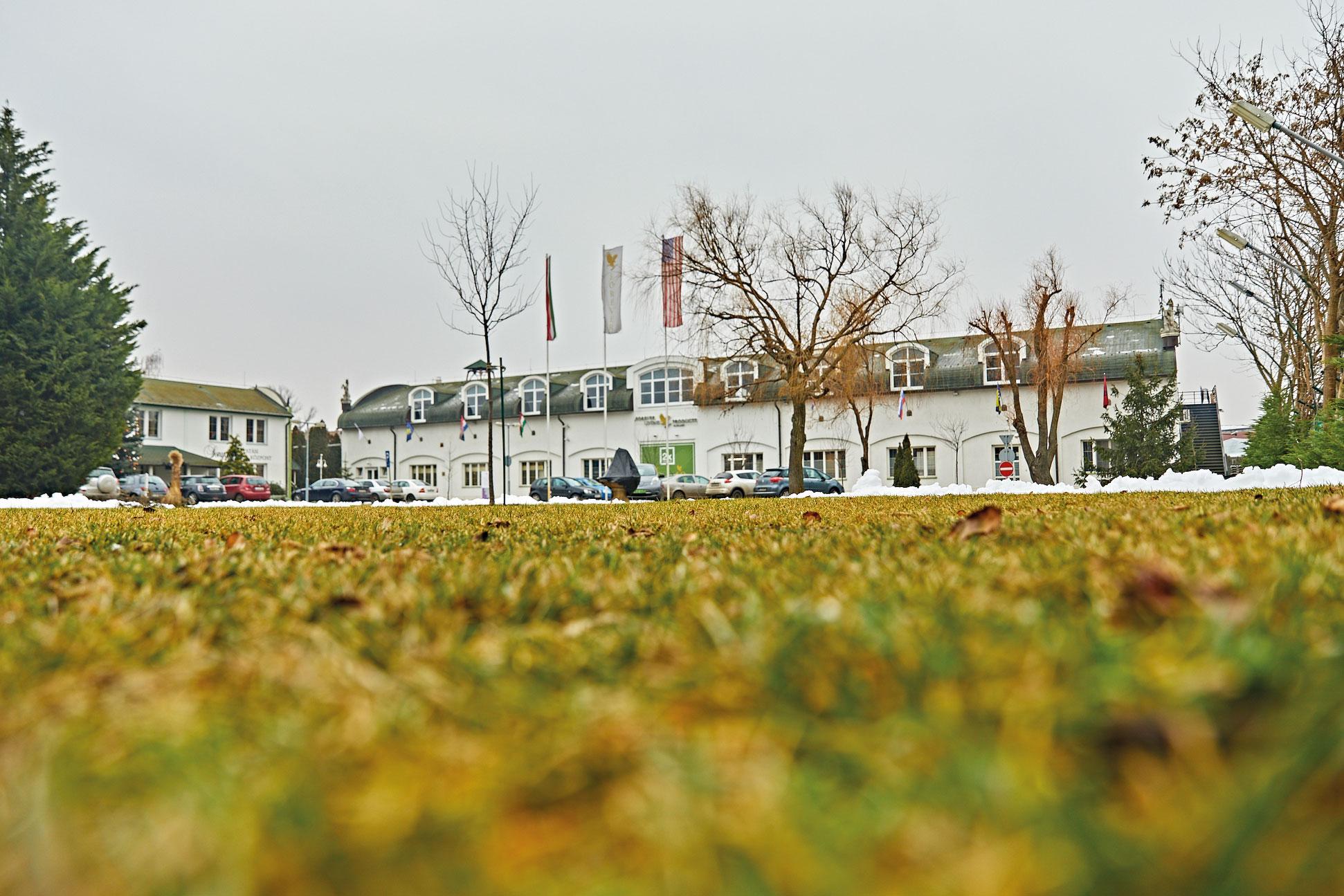 תמונה של משרדי FLP בהונגריה