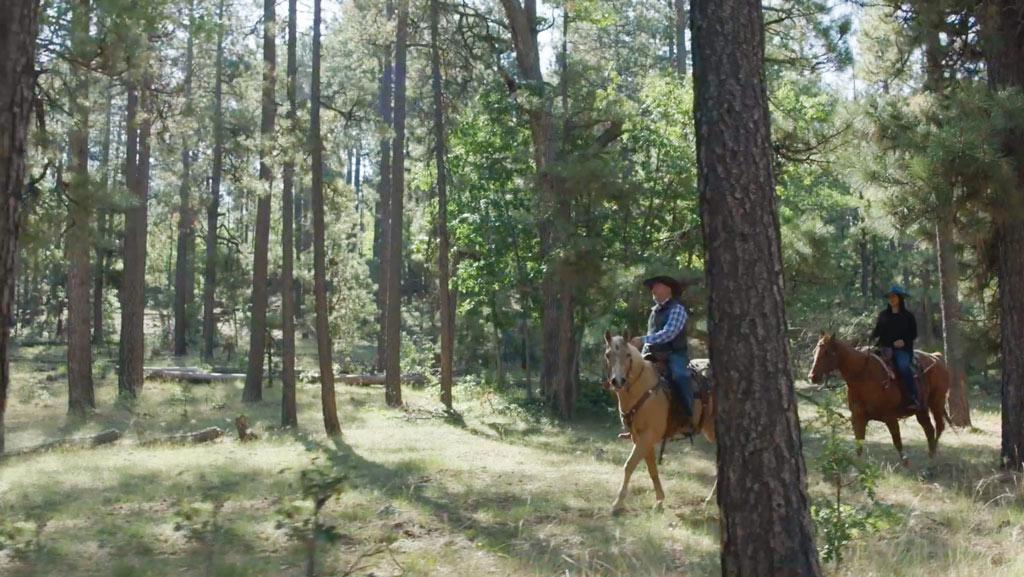 גרג על סוס